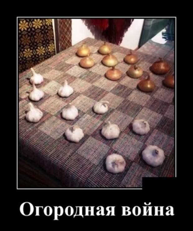 Подборка смешных и веселых демотиваторов из сети (12 фото)