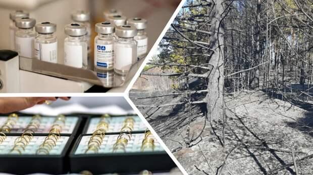 Поступление вакцины, первые лесные пожары, «ювелирное» ограбление: итоги понедельника