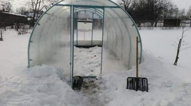 Снег нужен, чтобы почва не промерзла. /Фото: forum.na-svyazi.ru.