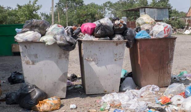 Установка новых мусорных площадок в Петрозаводске провалилась