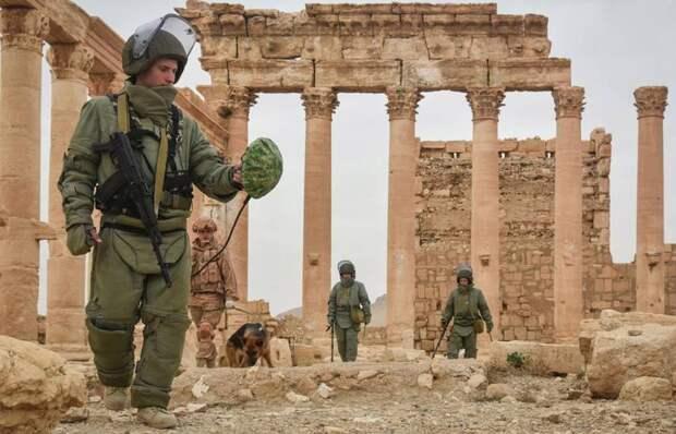 5 лет с начала российской военной операции в Сирии: чего мы добились?
