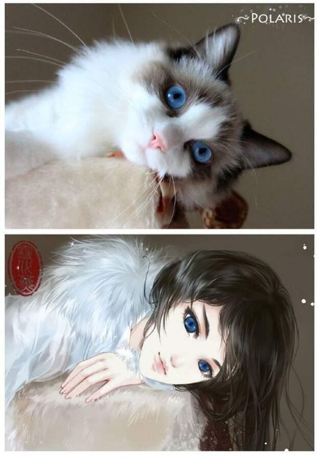 художник рисует кошки в персонажи аниме, художник превращает кошек в персонажей аниме