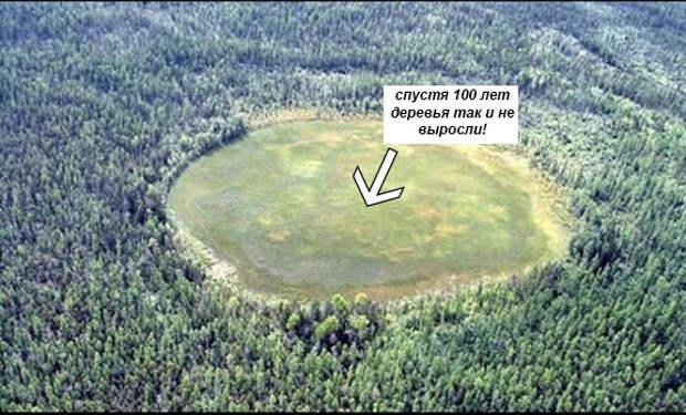 """Фотография места падения Тунгусского метеорита. Исходное изображение взято с сайта """"http://www.marieltour.ru"""""""