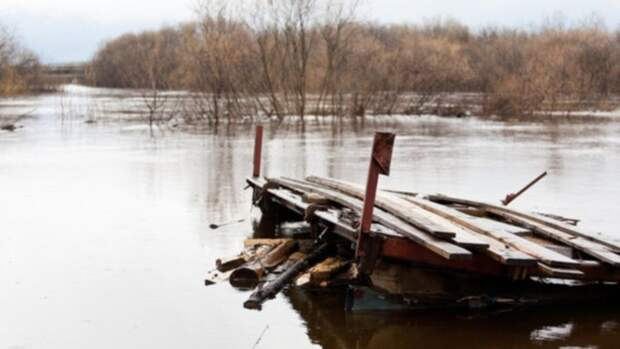 27 млн рублей выделили на расчистку русел рек в Алтайском крае