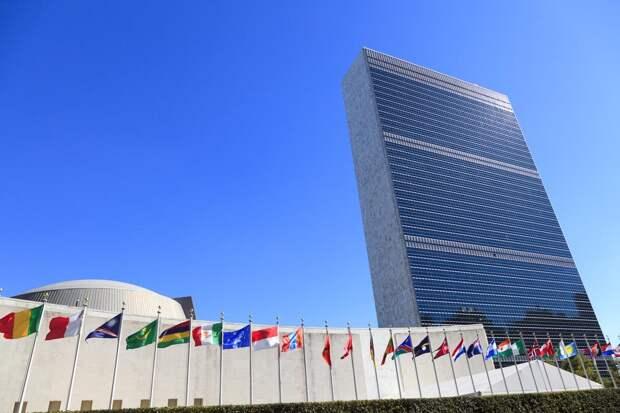 Эдуард Лимонов: Нам придётся уходить из ООН
