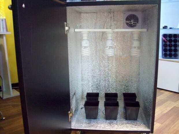 1. Несколько манипуляций и системник станет небольшой теплицей для овощей компьютер, новая жизнь старых вещей, процессор, своими руками, системный блок