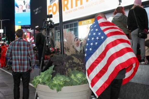Становится ли Америка несостоятельным государством?