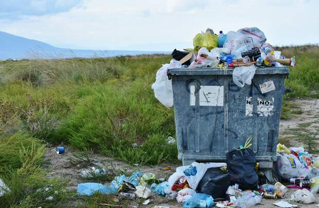 Идею запретить в ЕАЭС пластиковые пакеты раскритиковали в Минпромторге
