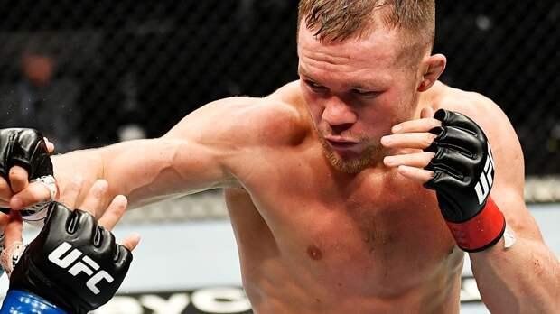 Русский чемпион UFC спокойно разберет американца в стойке. Прогноз на бой Петр Ян — Алджамейн Стерлинг
