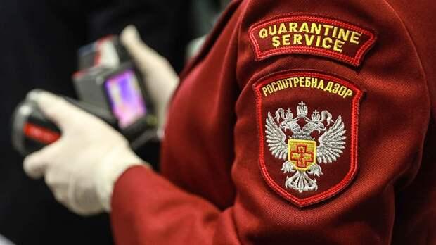 Роспотребнадзор заявил об отсутствии штамма AY.4.2 в Петербурге и Твери