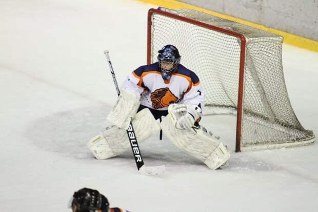 Хоккейный матч между командами «Молжаниново» и «Аркуда» закончился ничьей