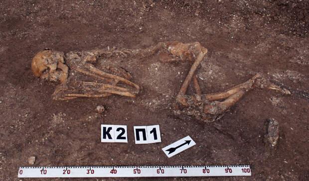 Скелетные останки человека из курганного могильника Натухаевская-3 в Краснодарском крае (майкопская культура). Фото: Колпакова А.Д.