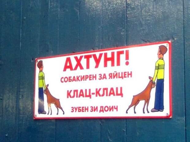 Интернациональные таблички животные, прикол