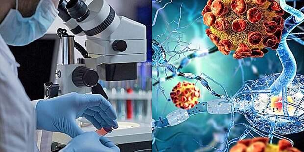 «Росатом» предложил новый способ диагностики и лечения рака