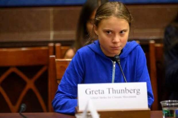 Расследование: кто финансирует проект Греты Тунберг