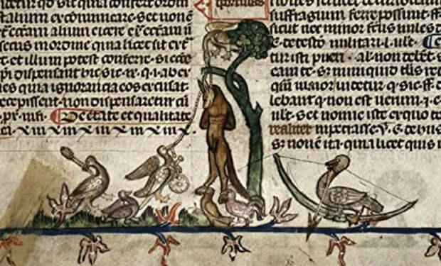 Шифр не могли разгадать 200 лет: кодекс Рохона