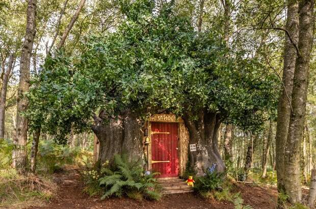 Дом Винни-Пуха можно будет арендовать за 7600 рублей