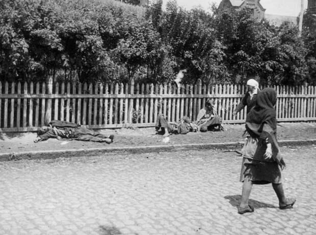 Когда и почему голодали в СССР