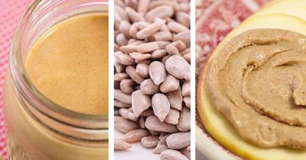 Свойства семян подсолнечника и рецепт полезного и вкусного масла (видео)