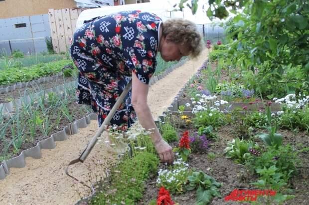 Зинаида Ивановна показывает, что в такой привычной для огородников позе она не работает, только стоя в полный рост