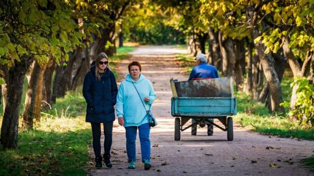 Солнечно, сухо и пожароопасно: прогноз погоды в Крыму на пятницу
