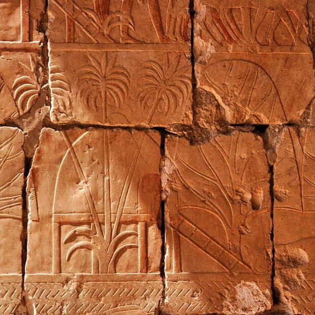 Для египтян Пунт был страной сказочных богатств, а потому то, что привозили из этих дальних краев, увековечивали на рельефах храмов