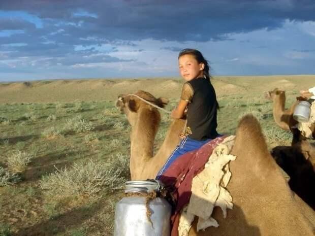 Красота по монгольский или как выглядят монгольские красавицы