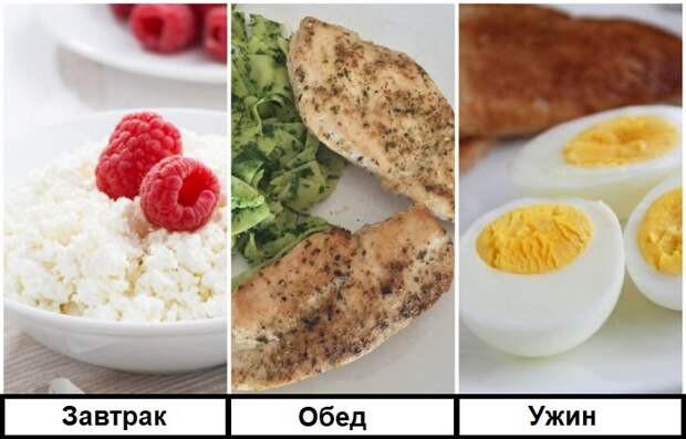 Нельзя есть один белок на завтрак, обед и ужин