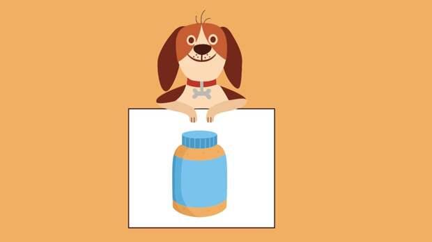 Собака и баночка