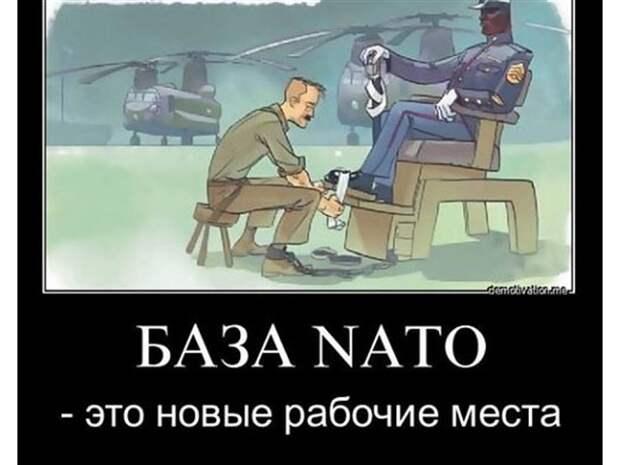 Ради НАТО режим Зеленского маразмирует до губительной войны?