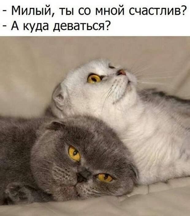 В театральном гардеробе. Жена мужу шепотом: - Ты с ума сошел!...