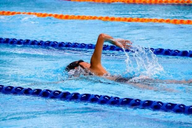 Учащиеся школы на Лавочкина взяли несколько медалей на Первенстве России по плаванию