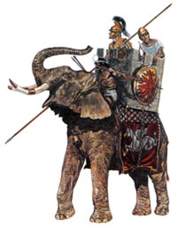 Боевой слон диадохов