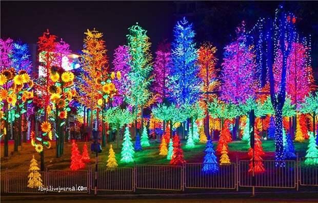 I-City: уникальный светящийся сад в Куала-Лумпуре