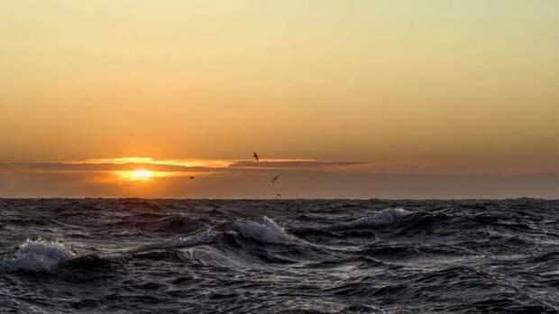 Арктический суд экологи проиграли