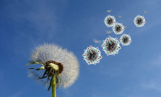 Эксперт Вулхаус оценил вероятность заражения коронавирусом на свежем воздухе