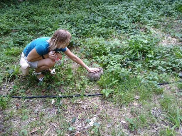 Как мы в первом в России СПА-глемпинге у Красной поляны побывали