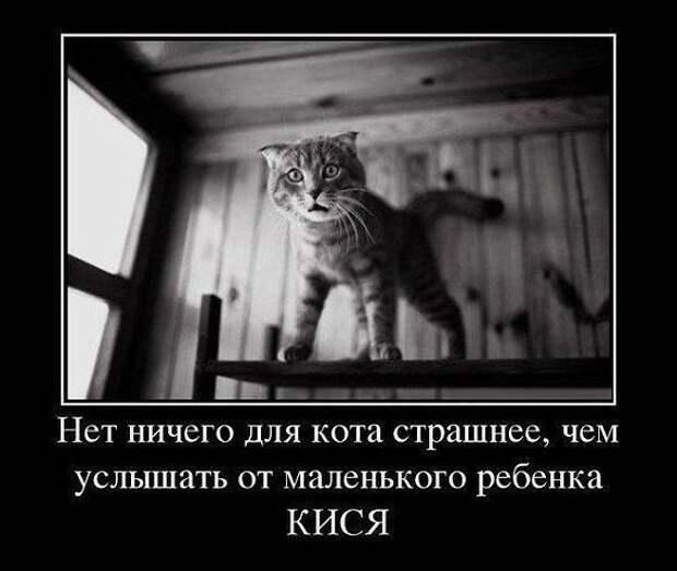 Наташа Ростова готовит завтрак. — Поручик, о что вы обычно разбиваете яйца?...