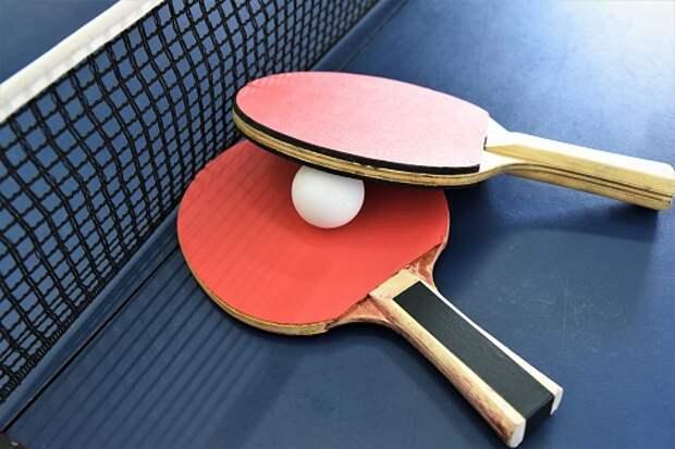 На Кашенкином Лугу пройдет турнир по настольному теннису