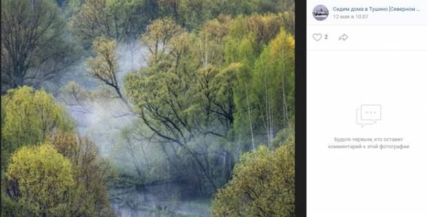 """Фото: Дмитрий Зверев, страница """"Сидим дома в Тушино Северном и Южном"""", """"ВКонтакте""""."""