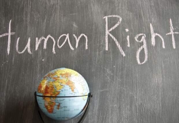 Международные правозащитники написали письмо Зеленскому о правах человека на Украине