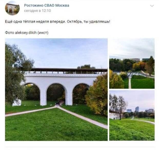 Фото дня: золотая осень в Ростокине