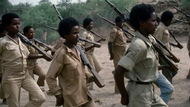 Эритрея впервые подтвердила наличие отрядов национальной армии в Тыграе