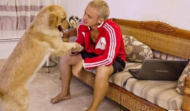 Уральский пес год ждал хозяина вкитайской гостинице иумер поприлету вРоссию
