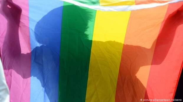 ЛГБТ против поправок в Конституцию