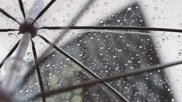 Облачность и кратковременные дожди ожидаются в Москве на выходных