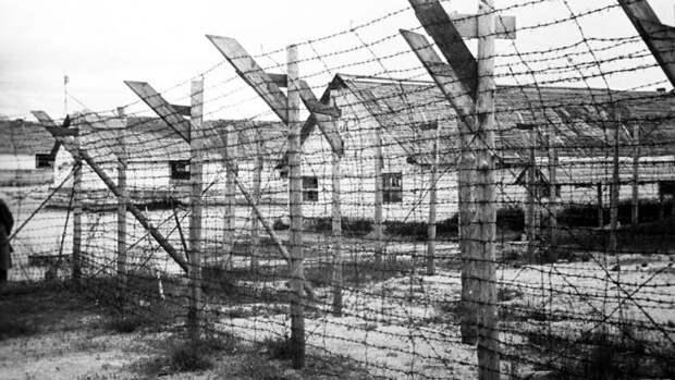 Финская газета оправдала создание концлагерей в Карелии в годы войны