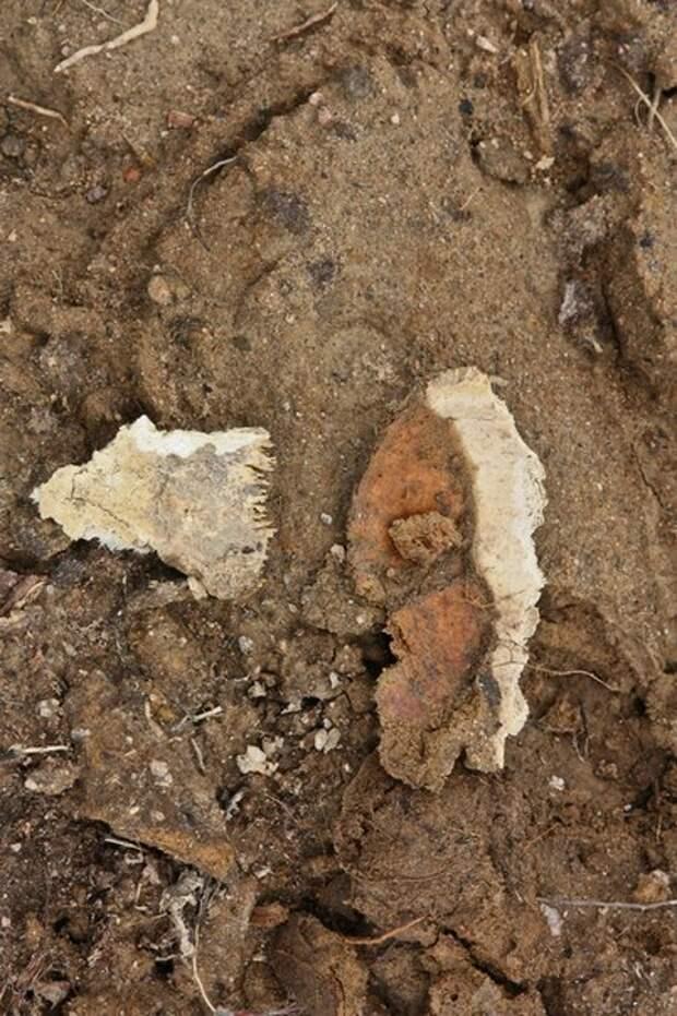 66 миллионов закопаны в раскопках