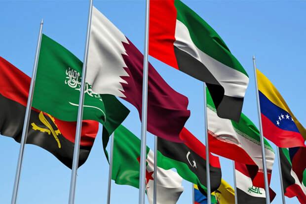 Две страны ОПЕК+ не хотят сохранять нынешние уровни добычи