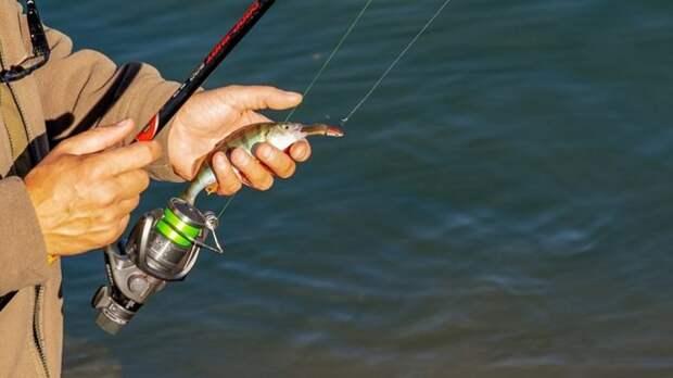Росрыболовство рассказало о новых правилах рыбалки